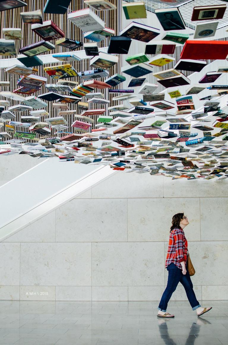 Richard Wentworth: False Ceiling | Efroymson Pavilion | IMA